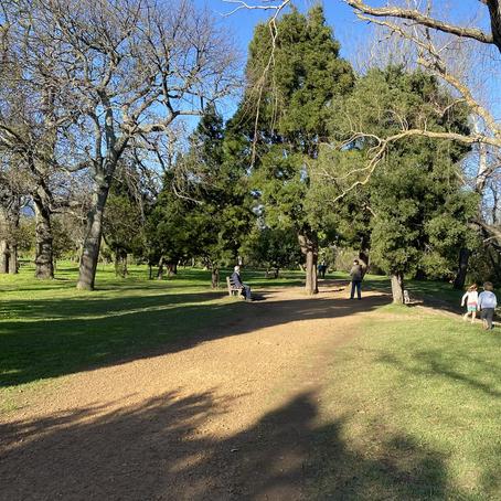 Location: Radlof park