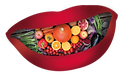 ND_mouth_logo_transparent.png