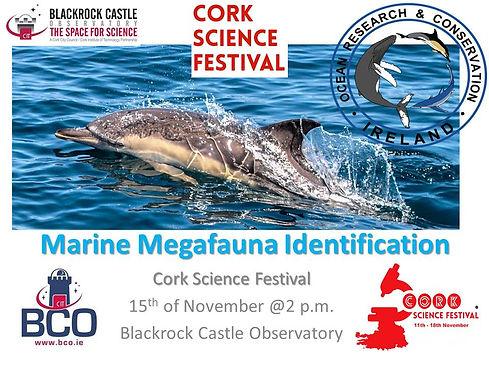 Marine Megafauna Identification poster C