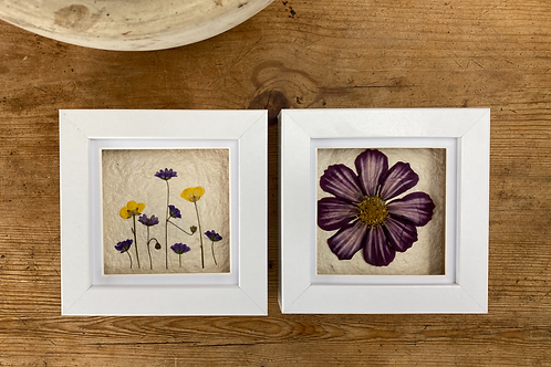 Pressed Flower Wall Art, Set of 2