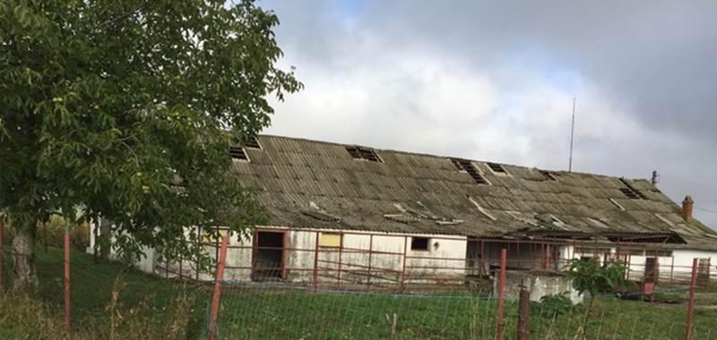 The REMM Farm