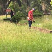 Volunteer weedeating grass
