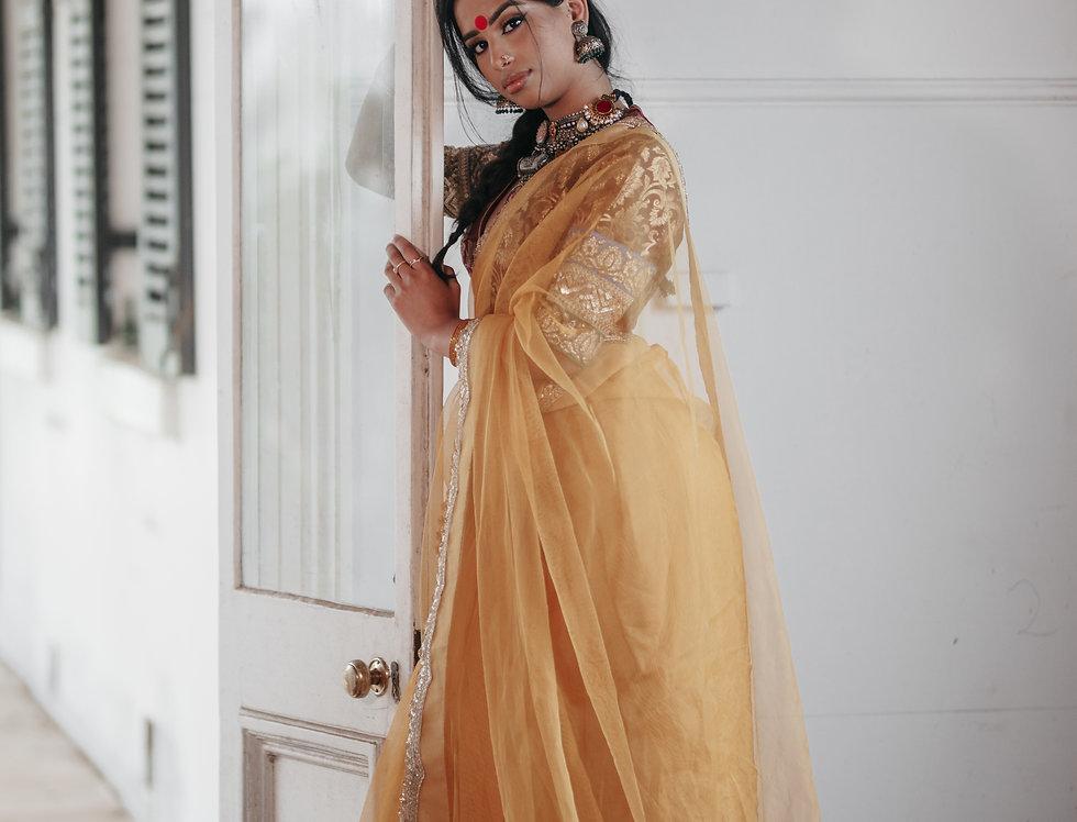 Pure Katan Tissue Net Saree/ Blouse