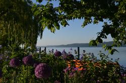Sipplinger Ufer