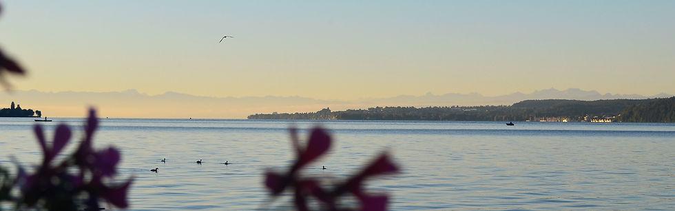 Morgendliche Stille am Bodensee. So muss der Tag starten.