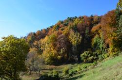Herbstwelten