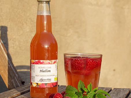 Kombucha - En dryck för hälsan