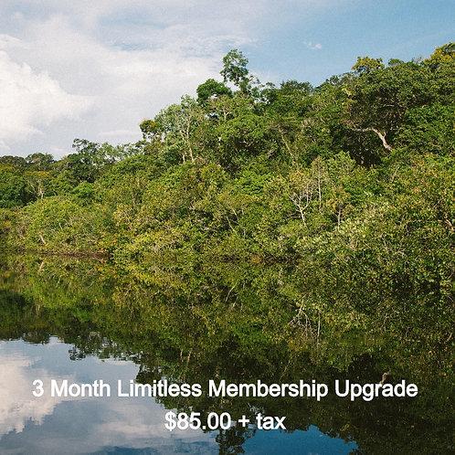 3 Month Limitless Membership Upgrade