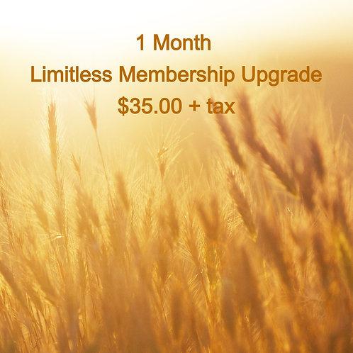 1 Month Limitless Membership Upgrade