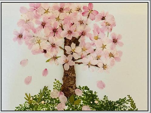 Pressed Flower Art - Cherry Blossom Tree