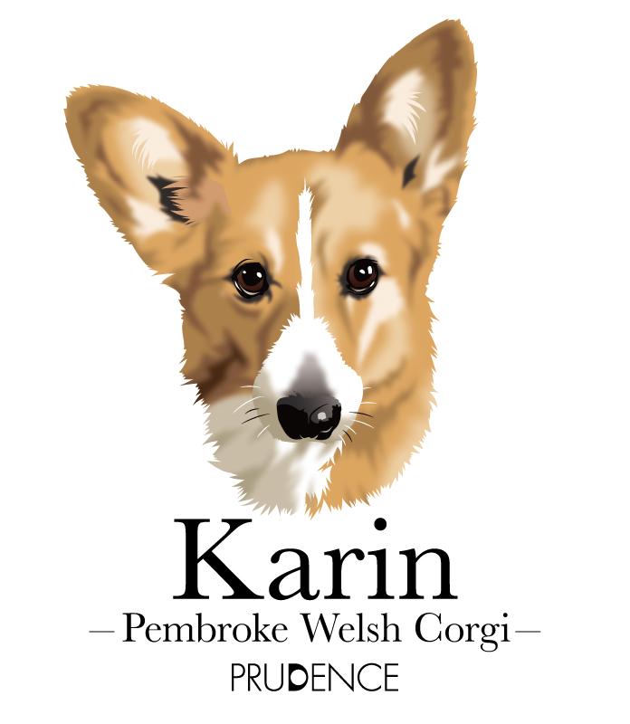 karin_2