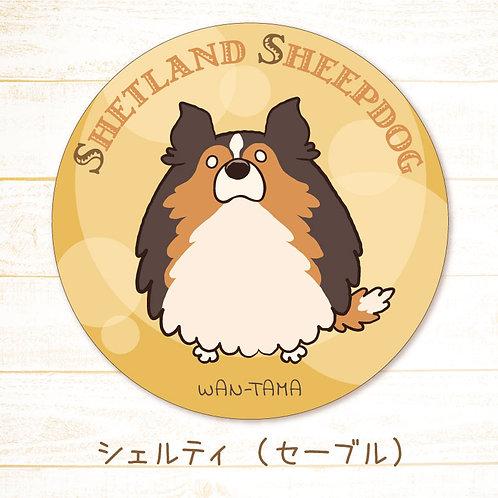 【予約特価】「シェルたま」ステッカー(2種)