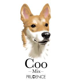 coo_2