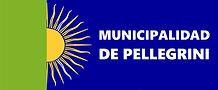 bandera_de_pellegrini.jpg