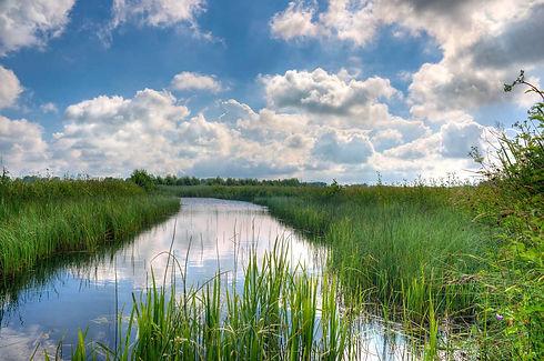 Sky-Marsh-Home-Page.jpg