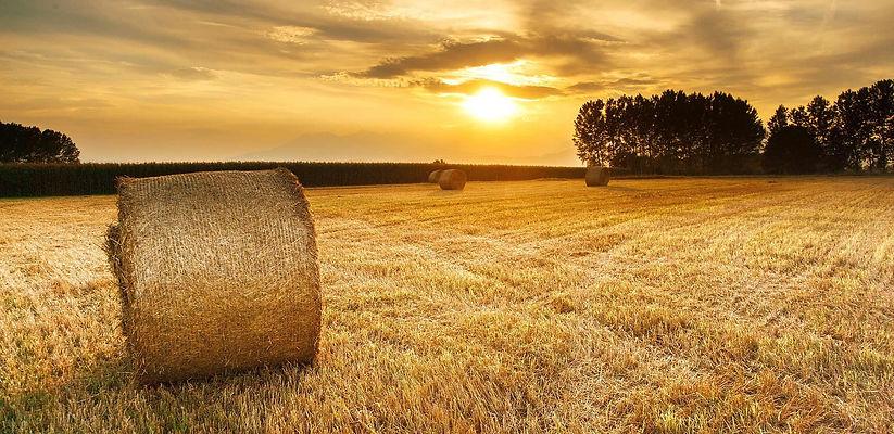 Hay-Bales-Sunset.jpg