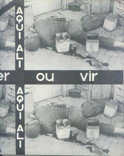 torquatália01013