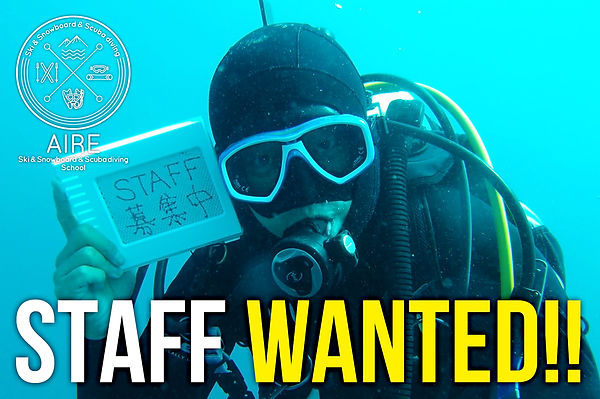 staff_wanted