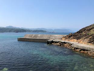 伊豆下田で体験ダイビング