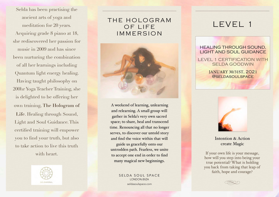 THE HOLOGRAM OF LIFE LEVEL1  PDF 2020_Pa