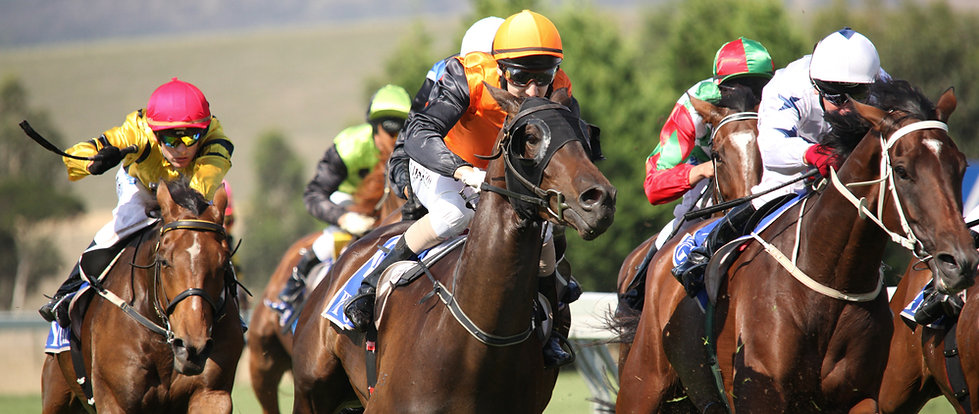horse racing betting assessments