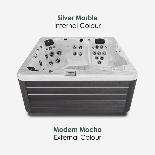 Modern Mocha & Silver Marble