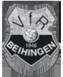 Logo-vfr.png