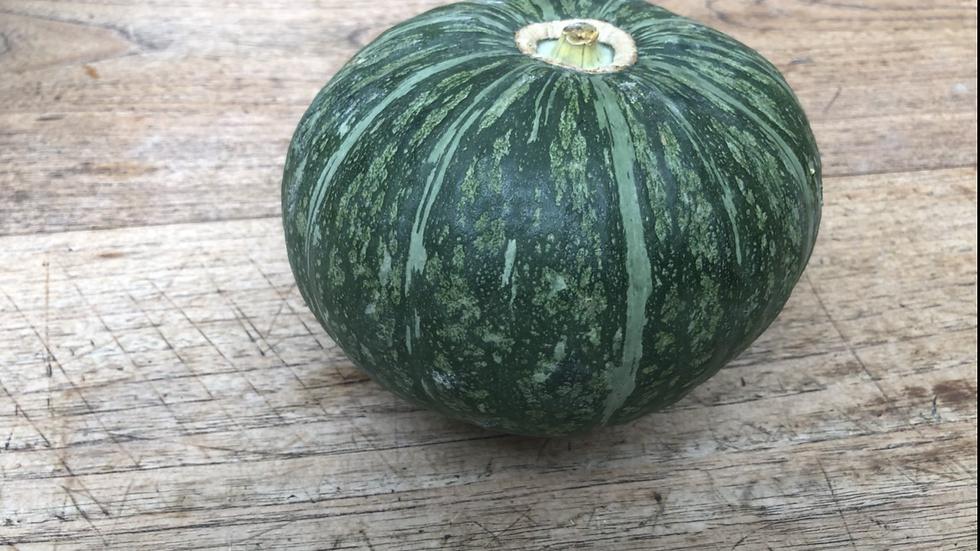 Japanese Pumpkin (1-1.2kg)