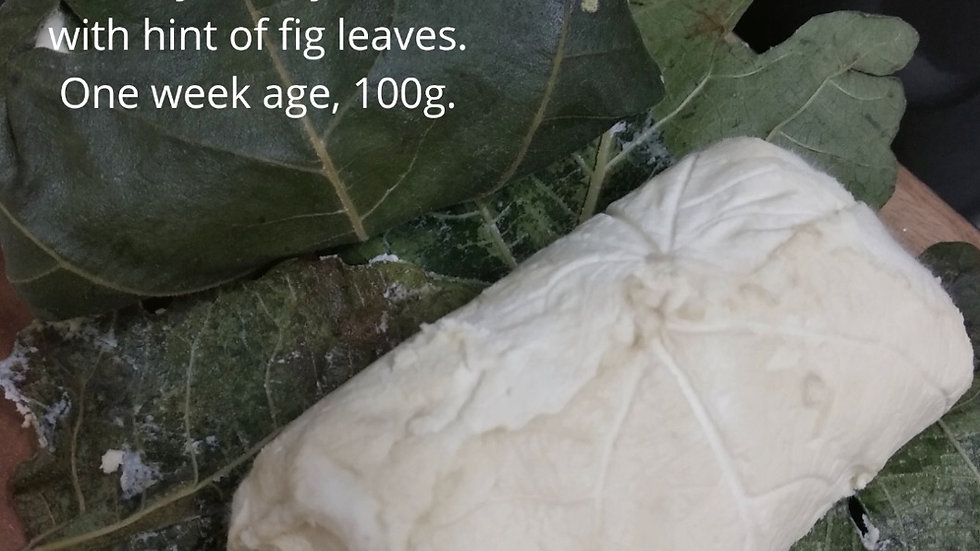 Goat cheese in Fig leaves