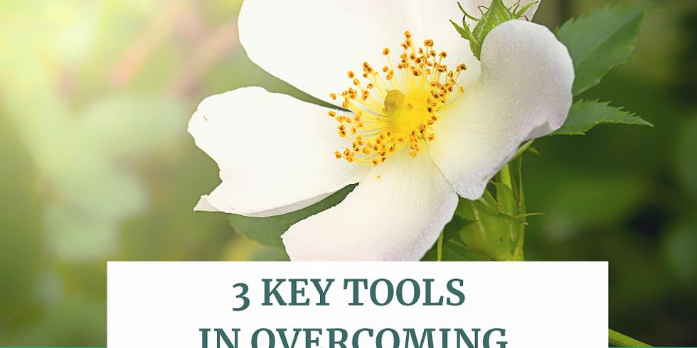 3 Key Tools in Overcoming Chronic Fatigue - free webinar