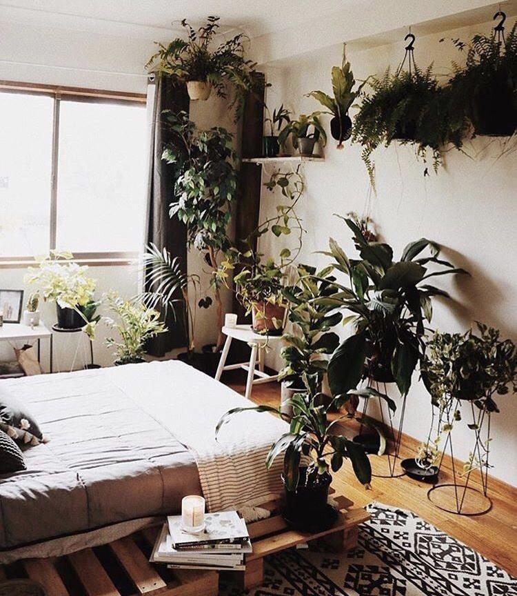Eco Room.jpeg
