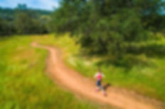 Hidden-Falls-Trail-Runner.jpg