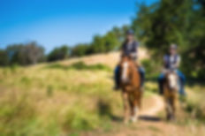 equestrians.jpg