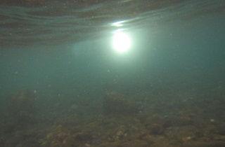 水中深く潜る