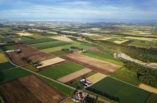 空から見た区分けされた農地