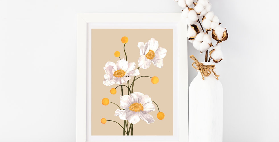 White Poppy   Beige Background