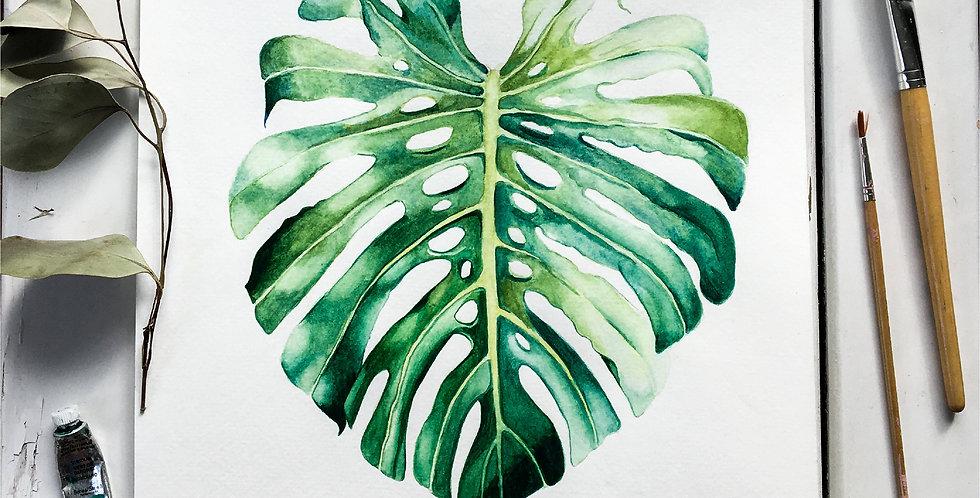 Monstera Leaf - Watercolor Plant