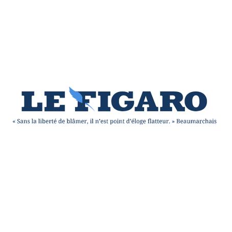 REFERENDUM CLIMAT - LE FIGARO - 10 MAI 2021