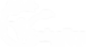 Vitabolize Logo WO.png