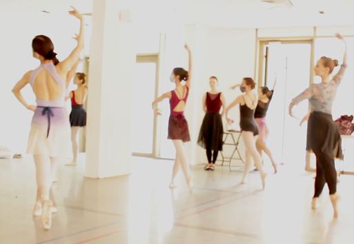 adult ballet workshop.png