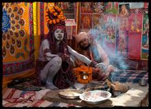 Rudraksha, il seme sacro.