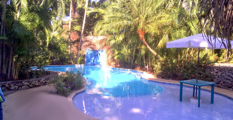 Cleaned Up Pool.jpg