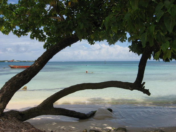 Our Public Beach, Cheppe's!