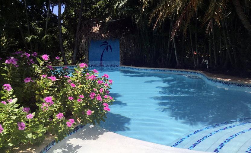 Utila Laguna Vista