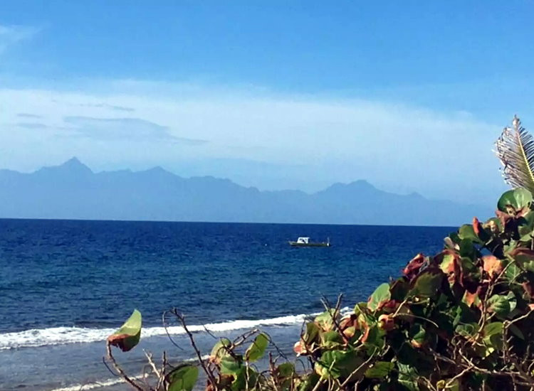 Our Caribbean...
