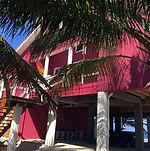 Hibiscus House 1.jpg