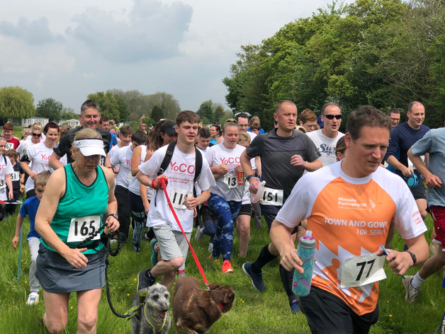 On your marks, get set, go! Buttercup Run 2019