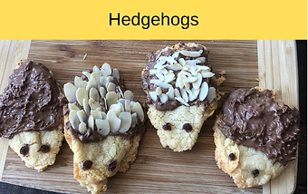Hedgehogs (2).png