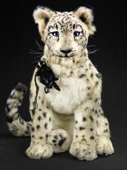 Snow leopard ICICLE