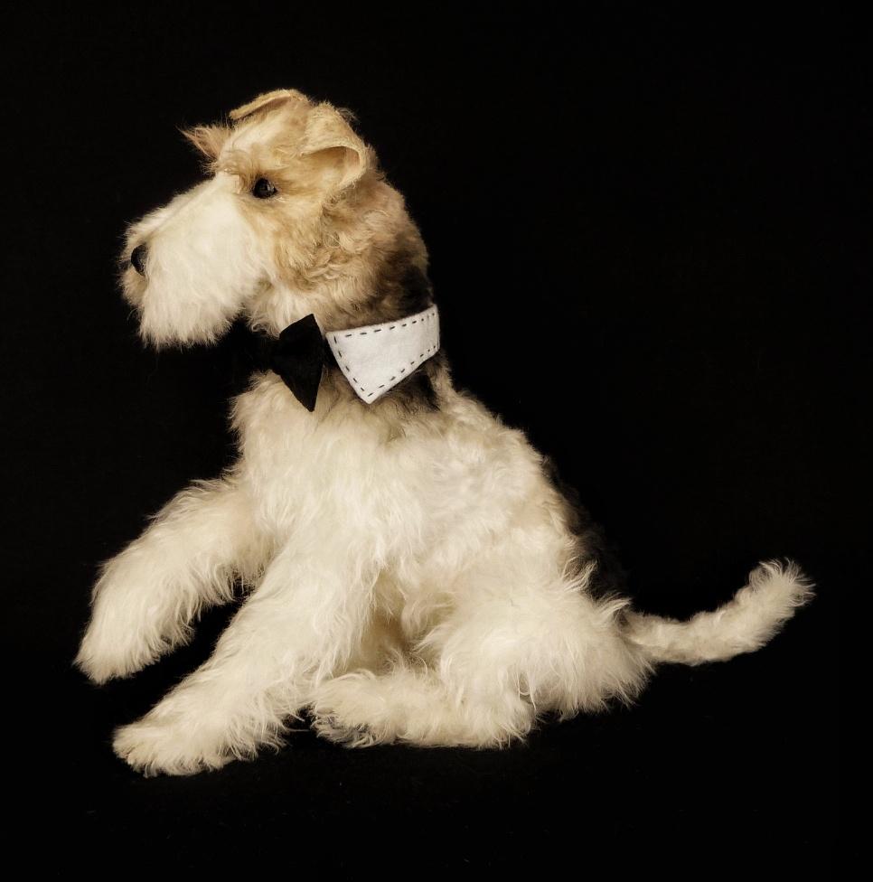 BYRON the fox terrier